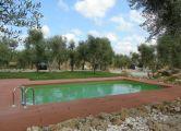 Monolocali  rupestri  confortevoli con piscina